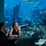 Обед «Морская фантазия»